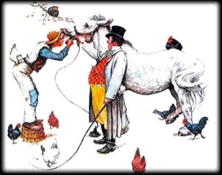 Photo ads/523000/523980/a523980.jpg : Zahnpflege für pferde