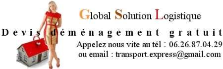 Photo ads/659000/659463/a659463.png : transport tableaux meubles coursier